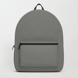 Old Silver Backpack