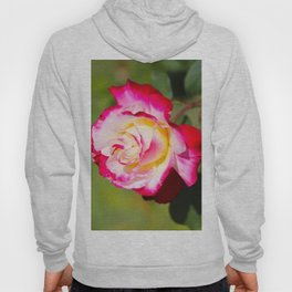 Red Pink and White Rose Hoody