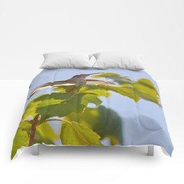 Hummingbird Chirping Away Comforters