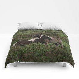 Wild Dartmoor Foals Comforters