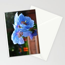 Blue Babies Stationery Cards