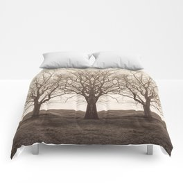 The Mirrored Trees Comforters
