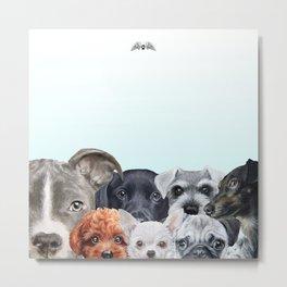 MiartDesign Original for Angels for Animals Network Metal Print