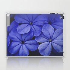 Purple/Blue Laptop & iPad Skin