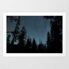 Stars and Trees Art Print