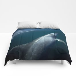 Blue dolphin Comforters