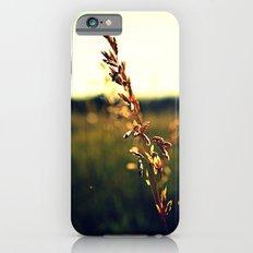 Prairie Wild - Color Slim Case iPhone 6s