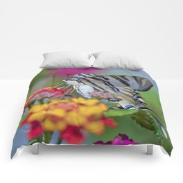 Southern swallowtail or zebra butterfly Comforters