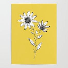 Wildflower line drawing | Botanical Art Poster