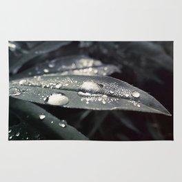 Dots on a leaf Rug