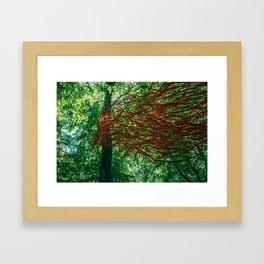 Wood bird Framed Art Print
