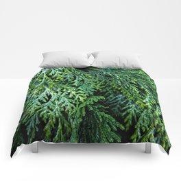 Pacific Redcedar Comforters