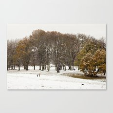 This beautiful winter Canvas Print
