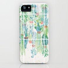 Winter in Glasshouses II Slim Case iPhone (5, 5s)