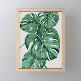 Monstera Framed Mini Art Print