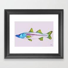 Uncommon Snook Framed Art Print