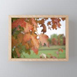 October Leaves Framed Mini Art Print