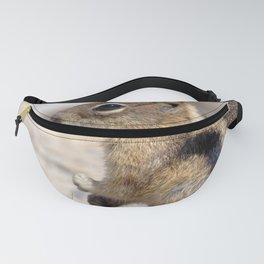 Watercolor Golden-Mantled Ground Squirrel 2 Fanny Pack