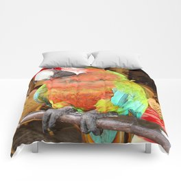 Harlequin Macaw On A Perch Comforters