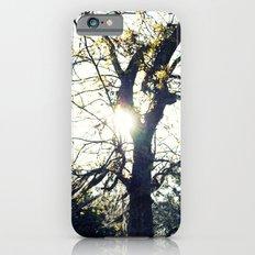 Golden Moss iPhone 6s Slim Case