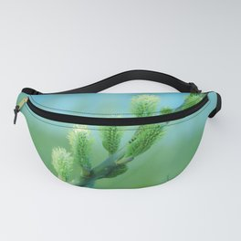 willow catkin Fanny Pack