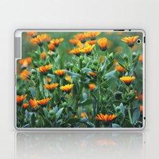 Orange Flowers #1 Laptop & iPad Skin