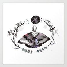 Midnight Moth Art Print