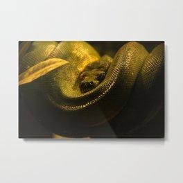 Snake Metal Print