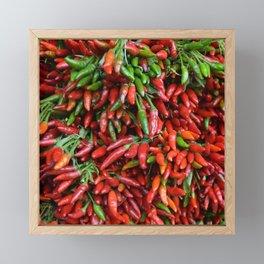 Hot Chili Pepper Framed Mini Art Print