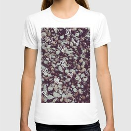 charcoal seashell pattern T-shirt
