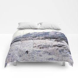 Winter Flatirons 35mm Comforters