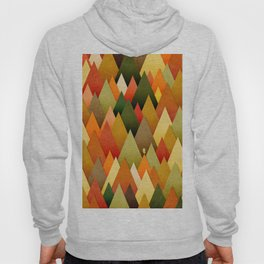 071 – deep into the autumn forest texture II Hoody
