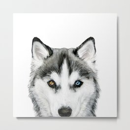 Siberian Husky dog with two eye color Dog illustration original painting print Metal Print