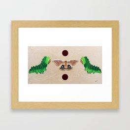 Teachers of Harmony Framed Art Print
