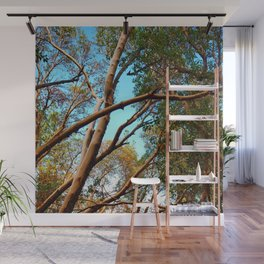 Madrone Wall Mural
