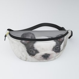 French Bulldog puppy Fanny Pack