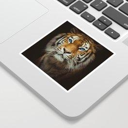 Wild Tiger with Blue eyes Sticker