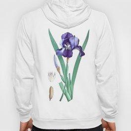 Vintage Botanical Purple Iris Flower Hoody