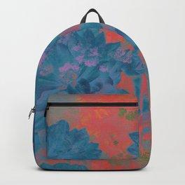 SENT Backpack