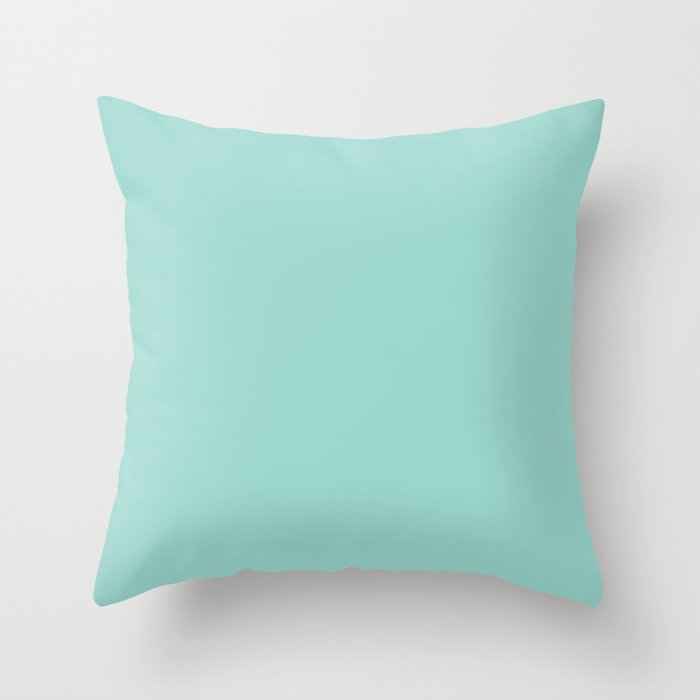 Dark Pastel Aquamarine Blue Green Solid Color  - All Color - Solid Hue - Single Shade Throw Pillow