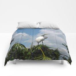 Dino Bird Comforters