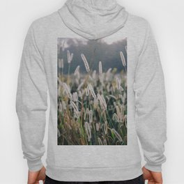 Whimsical Tall Grass Nature Field Landscape Photo Hoody