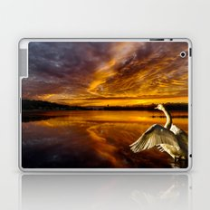 Swan Lake Laptop & iPad Skin