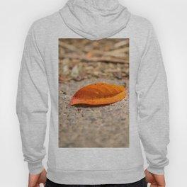 Orange leaf lying on the street Hoody