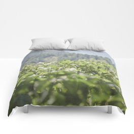 Wine Country Comforters