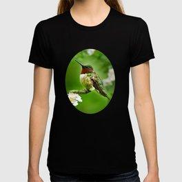 Hummingbird Flora T-shirt