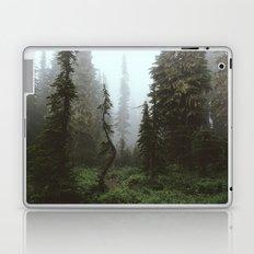 Rainier Forest Laptop & iPad Skin