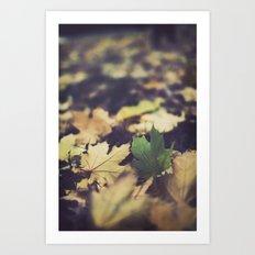 fall duet Art Print