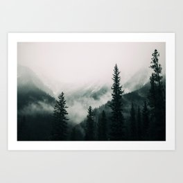 Over the Mountains and trough the Woods -  Forest Nature Photography Art Print