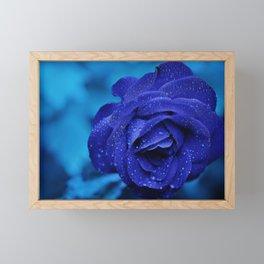 Rose Blue Flower Framed Mini Art Print